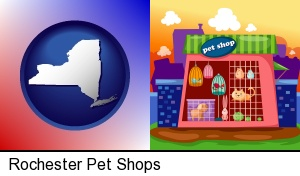 a pet shop in Rochester, NY